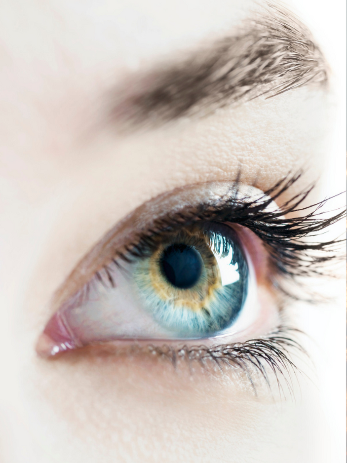 Our eyes see light differently according to circadian rhythm light science.