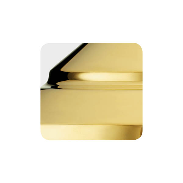 Polished brass light fixture finish example.