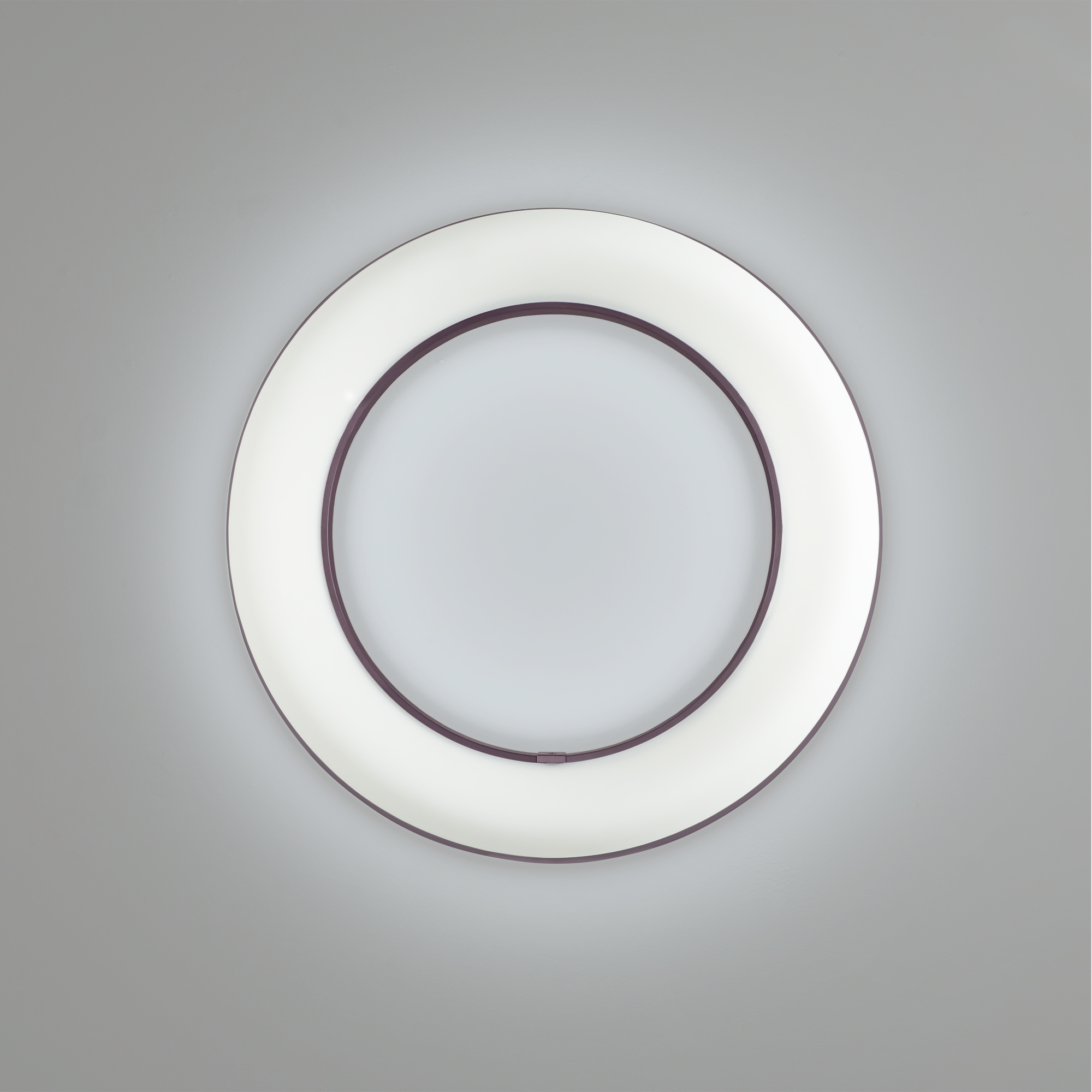 Meridian round new surface mounted ring lights