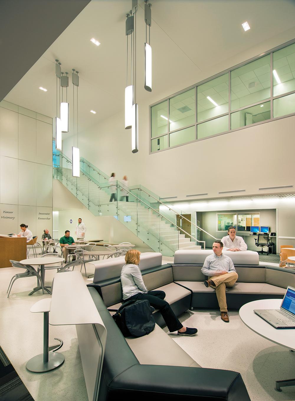 Air Foil pendants illuminate a large waiting room for a modern hospital lighting application.