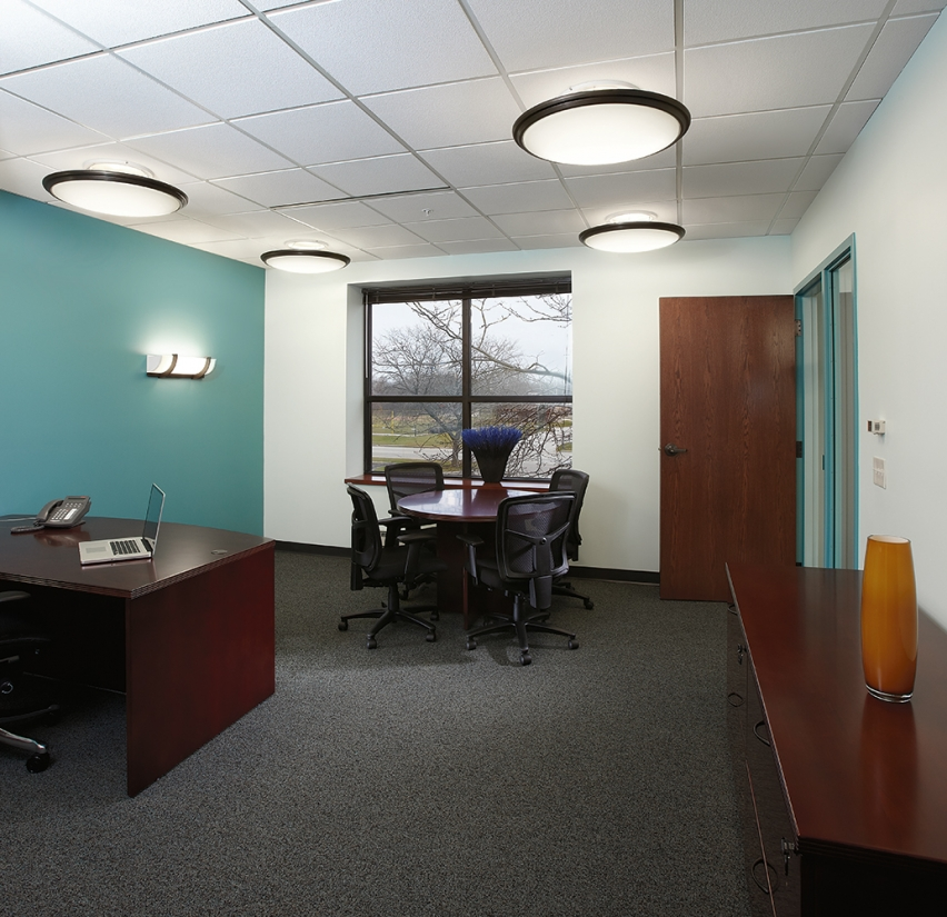 Ovation ceiling mounted elliptical luminaires with dark trim for classic, elegant office lighting.