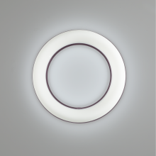 The new Meridian round ring wall sconce and ceiling luminaire
