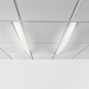 Dual overbed slot fixtures in a ceiling grid