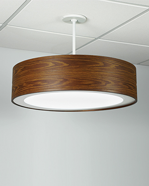 This surface mount architectural lighting fixture has a tailored minimal design while providing general and functional ambient light.
